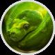 Beginners Python 3